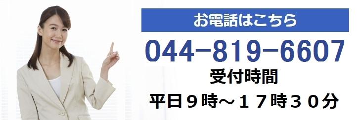 電話 044-819-6607